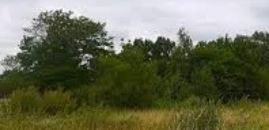 TERRAIN à COCODY Riviera 3 cap nord parcelle de 2200 m²