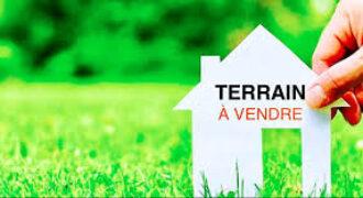 TERRAIN à la Riviera Palmeraie parcelle de 735 m²