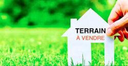 TERRAIN Riviera Golf 4 deux parcelles de 5000 m² et de 2000 m²